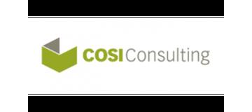 COSI Consulting