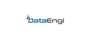 DataEngi LLC