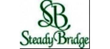 Steady Bridge
