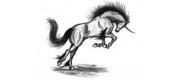 Unicorn - Consulting